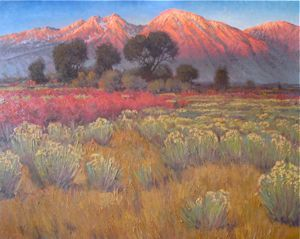 Western Landscapes - Desert Brush 48x60 $8500