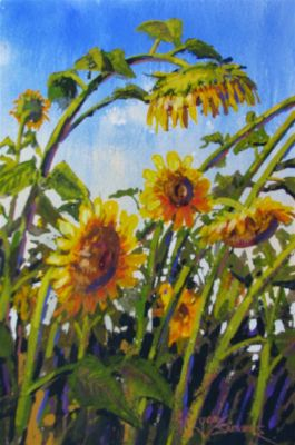 Watercolors - Sleepy Sunflower 9x7  $750
