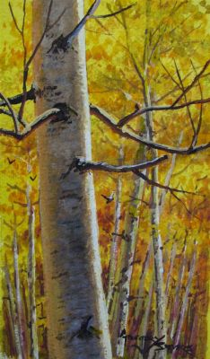 Watercolors - Aspens in Fall 9x7  $750