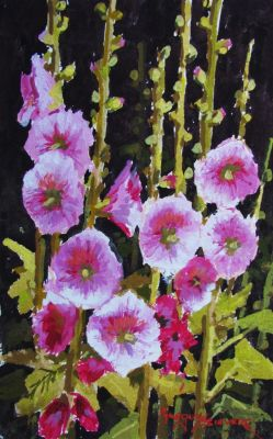 Watercolors - Hollyhocks 10x8  $750