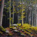 5x7 Paintings - Deep Woods