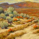 Desert Landscapes - Spring Time In the desert 24x36  $5500 SOLD