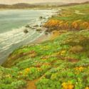 Wild Flowers Plein Air - California Coast 16x20 $3500